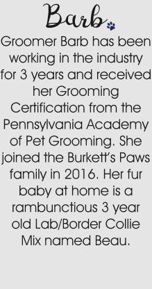 Groomer Barb has been working in the industry for 3 years and received her Grooming Certification from the Pennsylvania Academy of Pet Grooming. She joined the Burkett's Paws family in 2016. Her fur baby at home is a rambunctious 3 year old Lab/Border Collie Mix named Beau. Barb