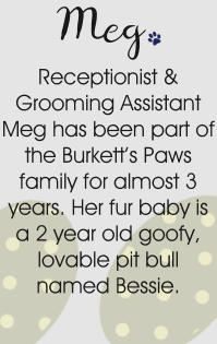 Receptionist & Grooming Assistant Meg has been part of the Burkett's Paws family for almost 3 years. Her fur baby is a 2 year old goofy, lovable pit bull named Bessie. Meg